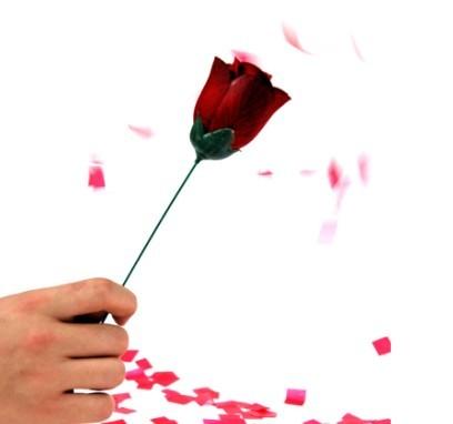 火把玫瑰2代--自动火把变玫瑰(单手操作)--中国魔术